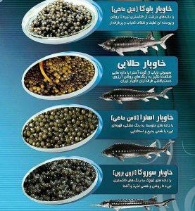 لیست انواع خاویار های ایرانی