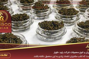 نمایندگی فروش خاویار در شیراز