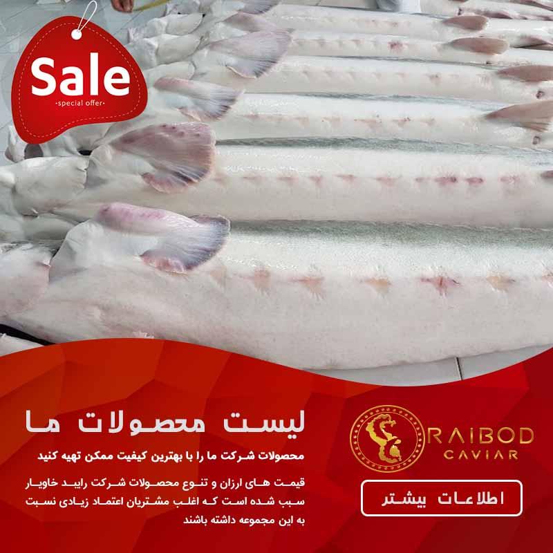 قیمت هر کیلو ماهی خاویار